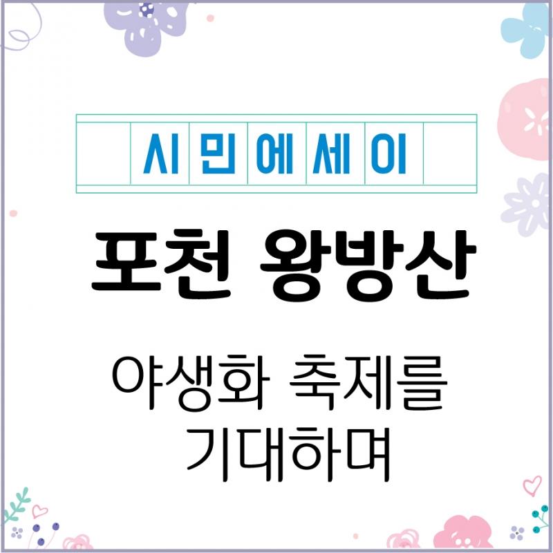 포천의 진산 왕방산(王方山) - 야생화 축제를 기대하며