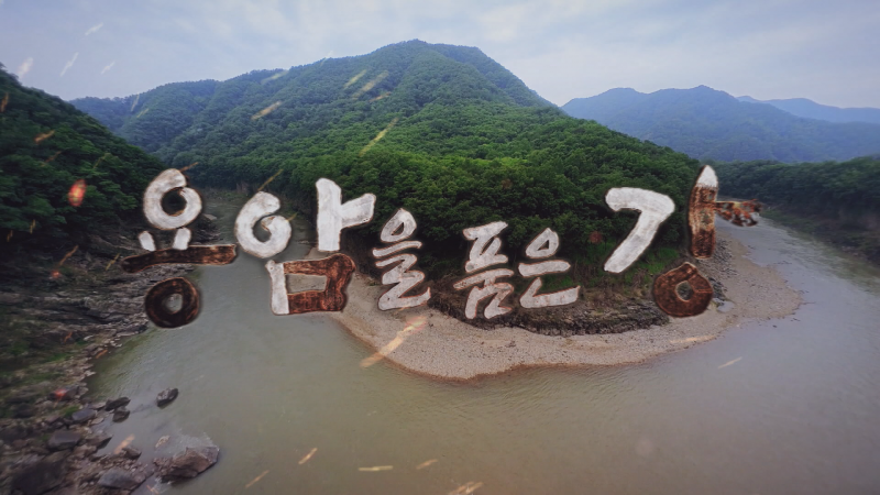 YTN 포천 한탄강 유네스코 세계지질공원 기념 〈다큐 제1부 용암을 품은 강〉