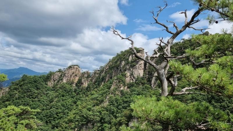 8월 포천 운악산의 경치